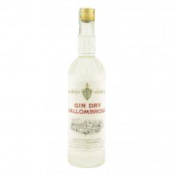 Gin Dry Vallombrosa 70 cl
