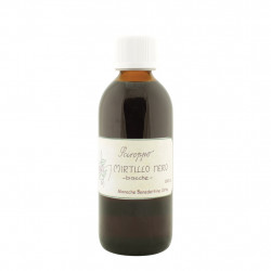 Blueberry Syrup 160 ml