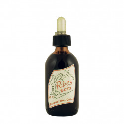 Blackcurrant Extract 50 ml