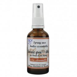 Soirée paizzzible Spray for environments 50 ml