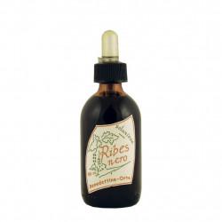 Schwarze Johannisbeere Extrakt 50 ml