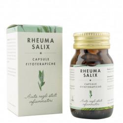 Rheuma Salix (pour les états inflammatoires) Capsules phytothérapeutiques 20 g