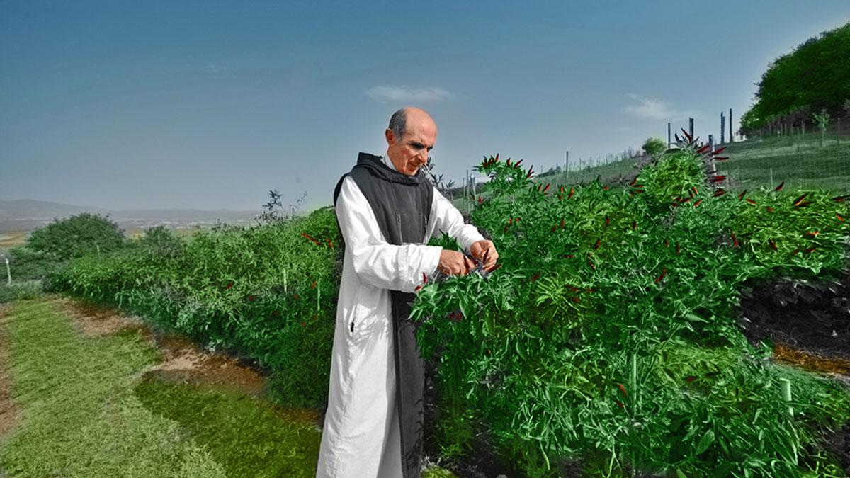 Prodotti dei Monasteri: Ora et Labora